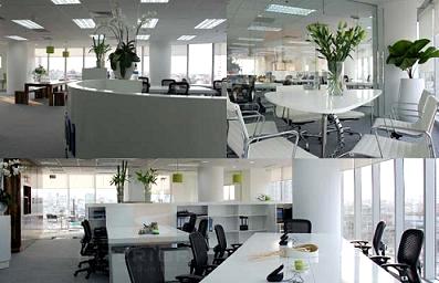 Ánh sáng tự nhiên có lợi cho sức khỏe dân văn phòng
